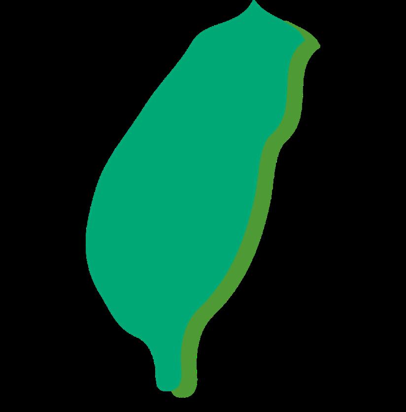 Hometown Taiwan 台灣生活